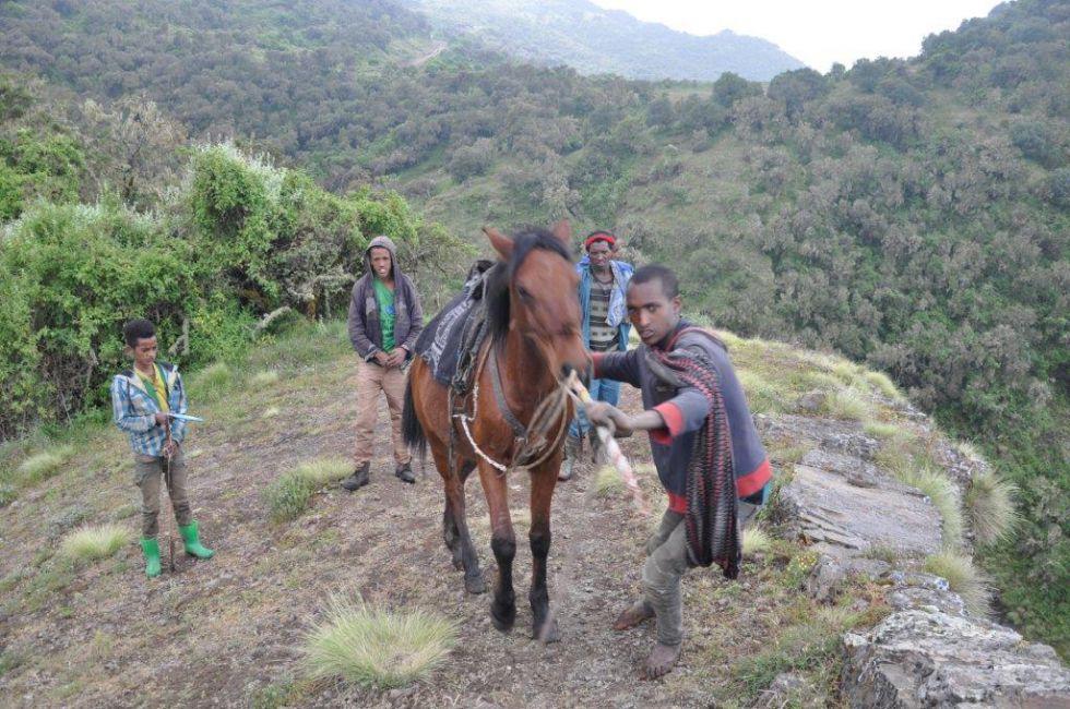 Semien Park w Etiopii.