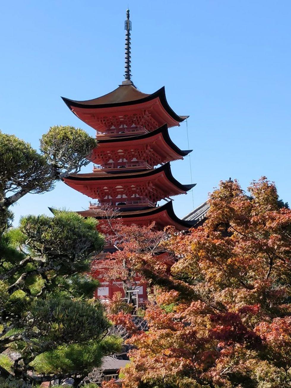zwiedzanie-japoni