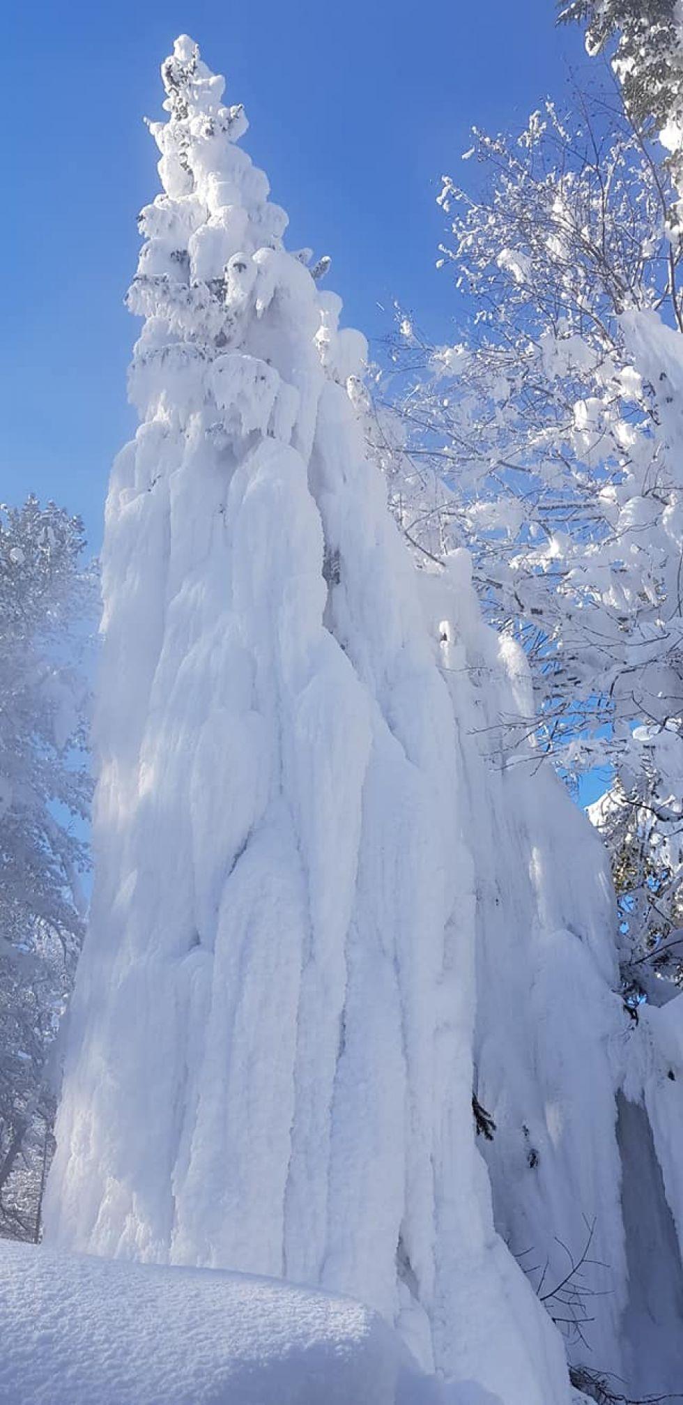czapy sniezne w rosji
