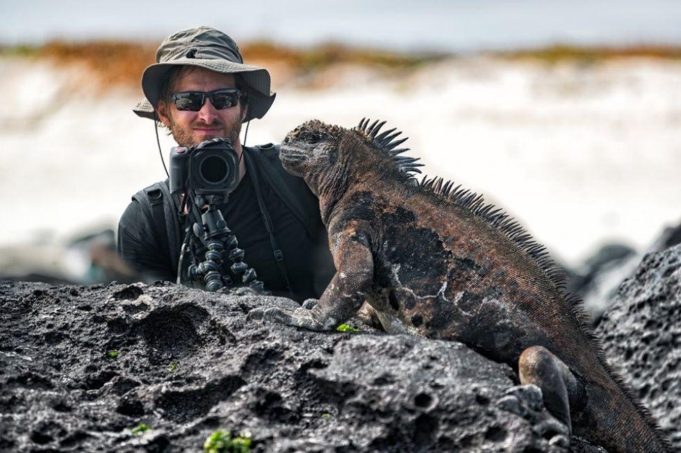 legwany-na-wyspie-baltra-nalezacej-do-archipelagu-galapagos-w-ekwadorze
