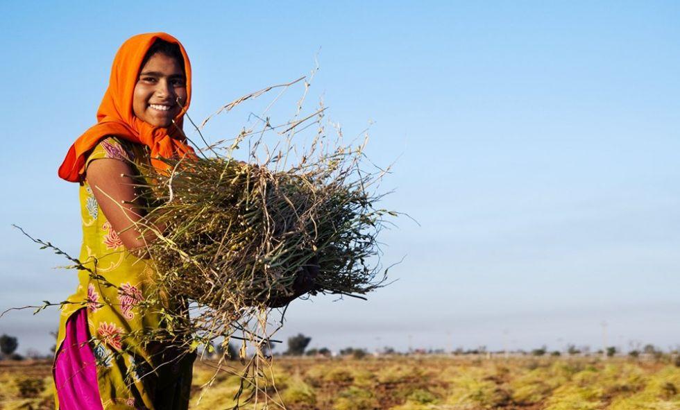kobieta z indii