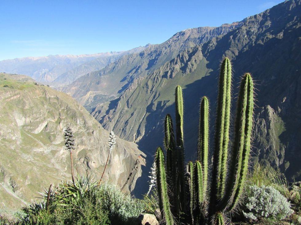 widoki podczas trekkingu do kanionu colca