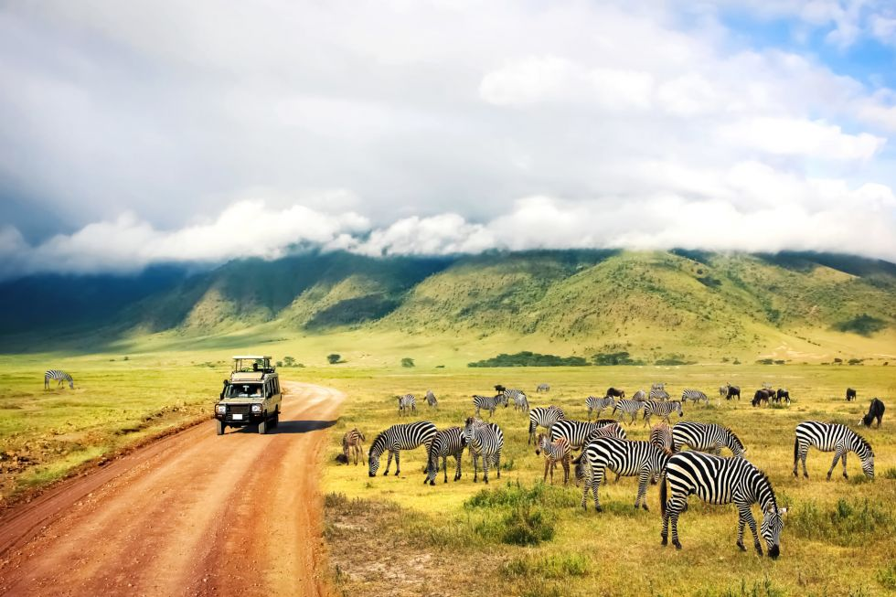 widoki afrykanskiej przyrody