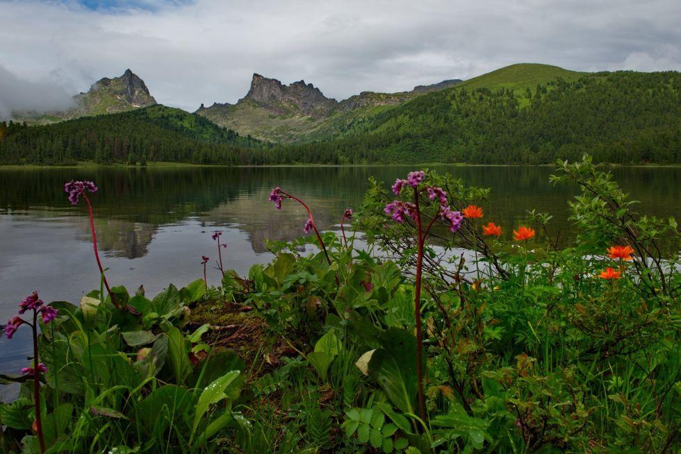 zielone krajobrazy w rosji
