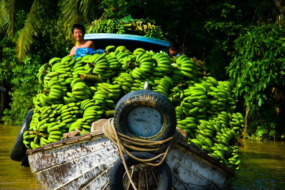 transport-bananow-lodzia