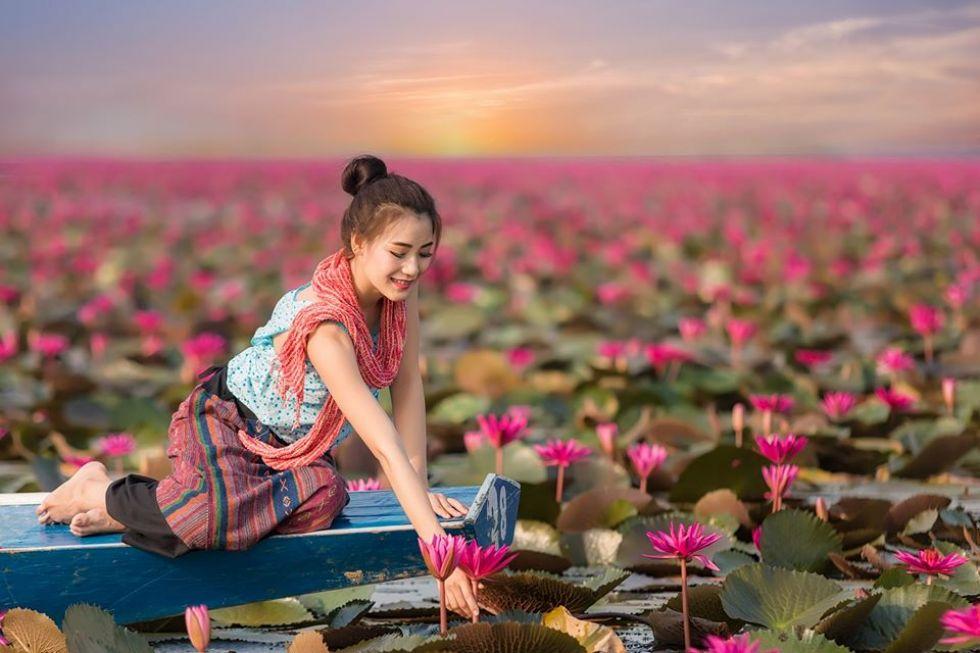 lilie-wodne-w-azji