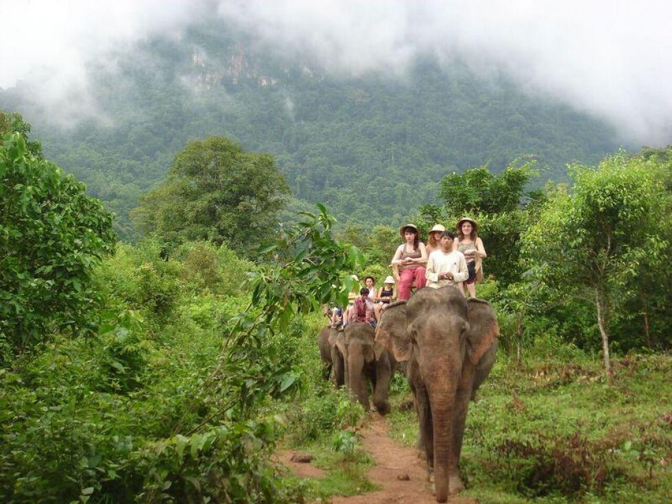 Przejazdzka na sloniach