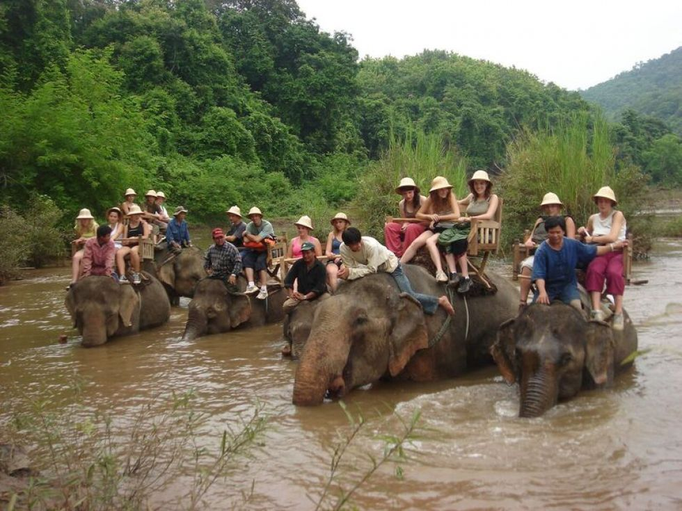 Kapiel ze sloniami