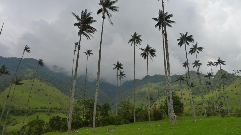 wycieczka Kolumbia