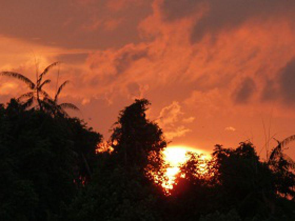 wyprawa przez Amazonię, zachod słońca w amazońskiej dżungli