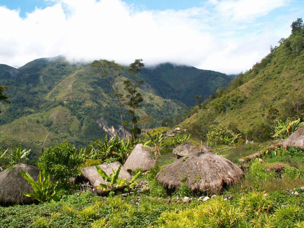 wycieczka papua