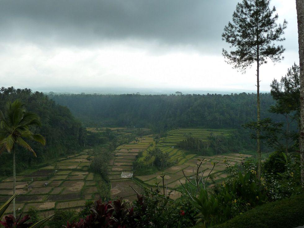 wyjazd do Indonezji