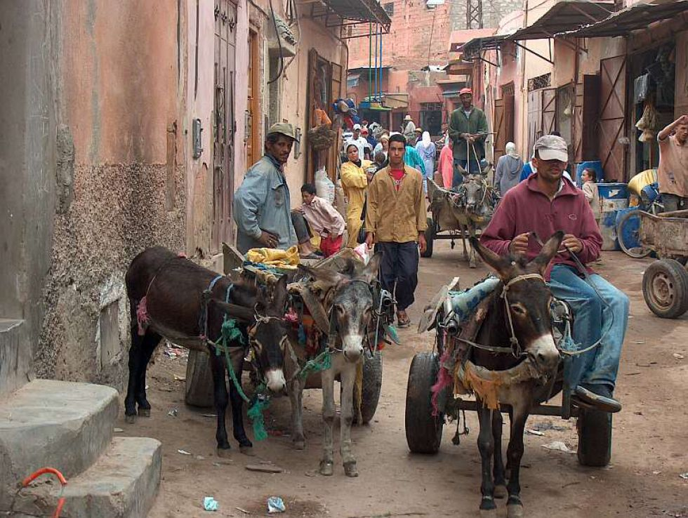 wyprawa do Maroko