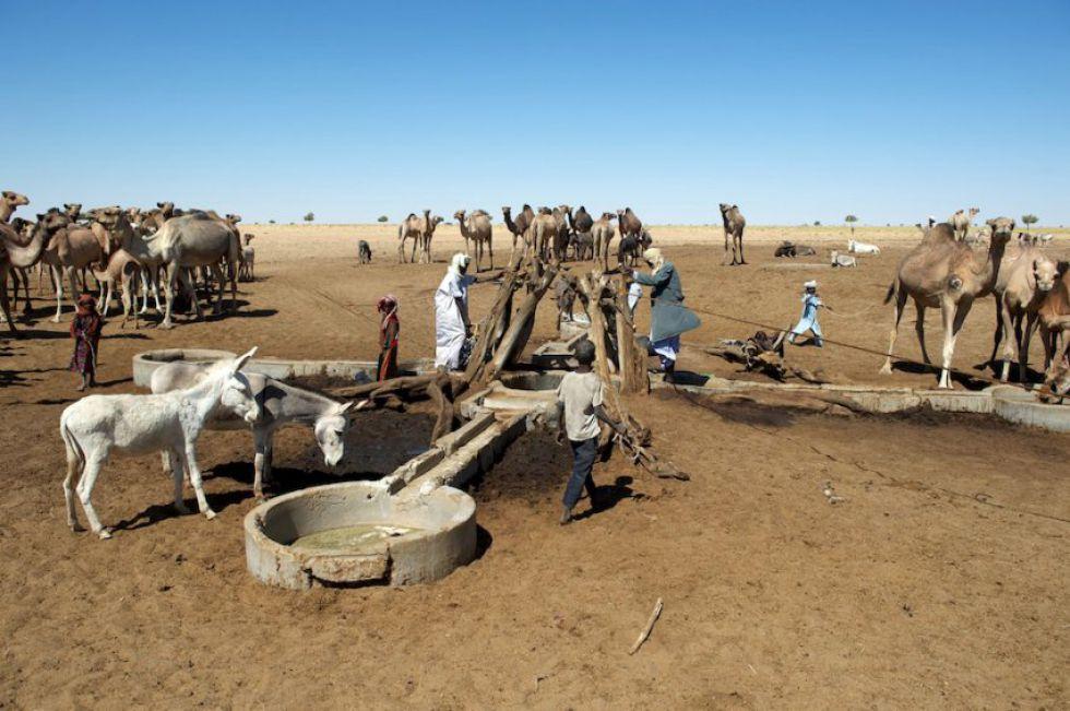 Wyprawa do Afryki - Sahara bez retuszu