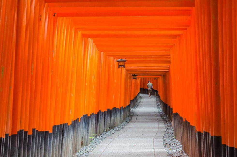 bramy torii przed swiatynia fushimi inari