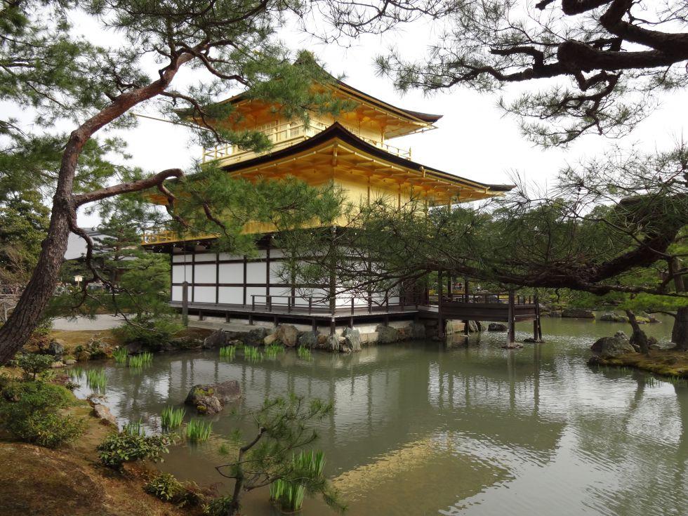 Złoty Pawilon w Kioto, wycieczka do Japonii.