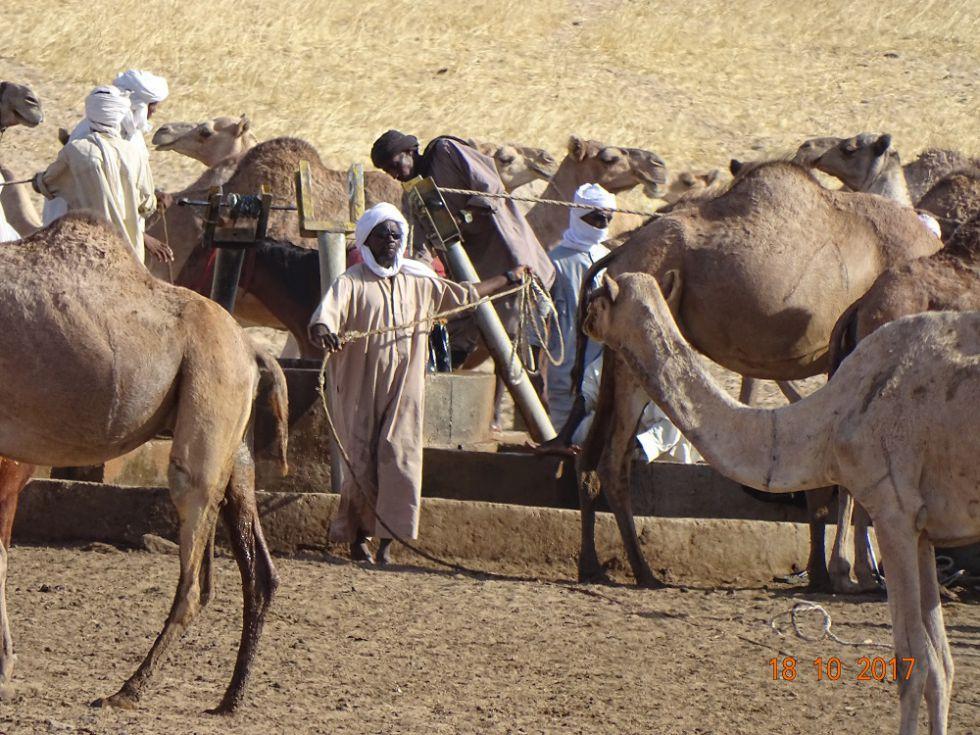 Niesamowicie ekscytująca podróż po Czadzie.