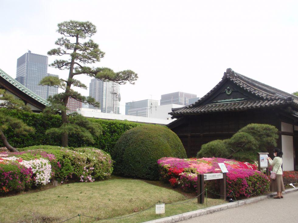 Wyprawa dookoła swiata Japonia