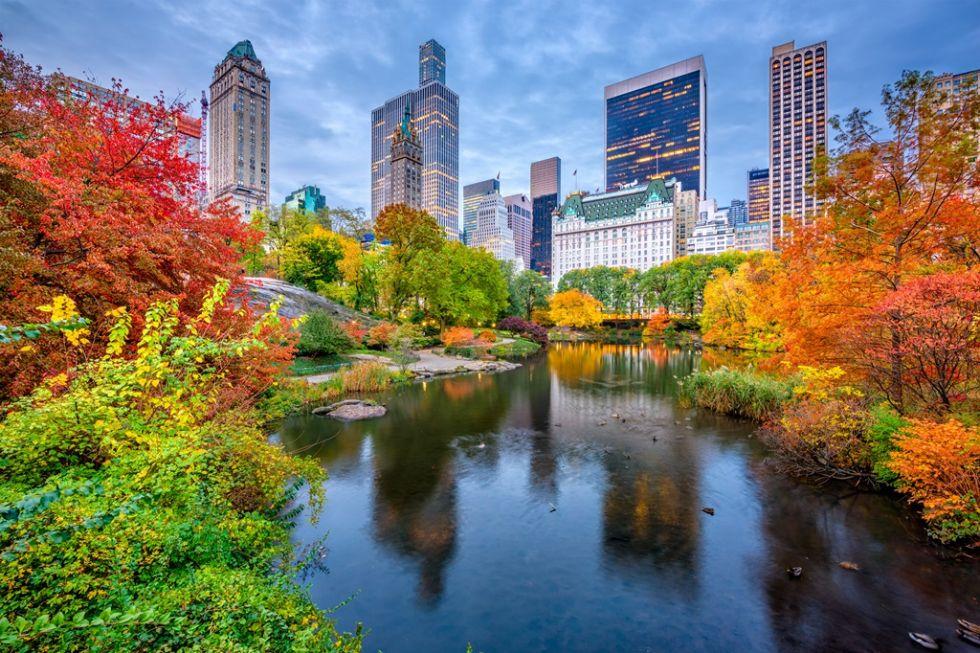 Spacer po Central Parku - najpopularniejszym paku Nowego Jorku