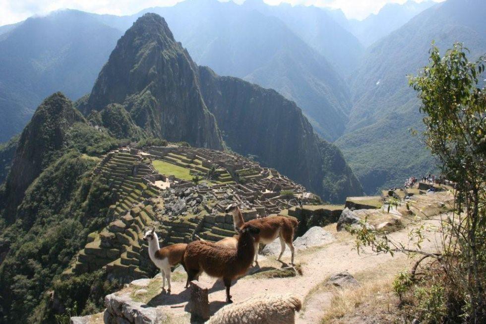 Machu Picchu - Wycieczka do Peru