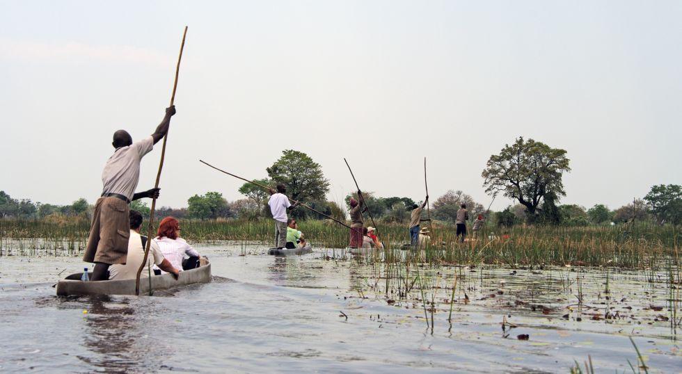 safari wodne po rzece Chobe
