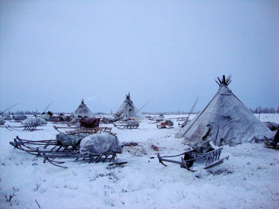 Ural polarny. Wycieczka Nieńcy, Workuta, Syberia