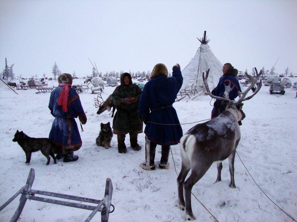 Zimowa przygoda za kręgiem polarnym