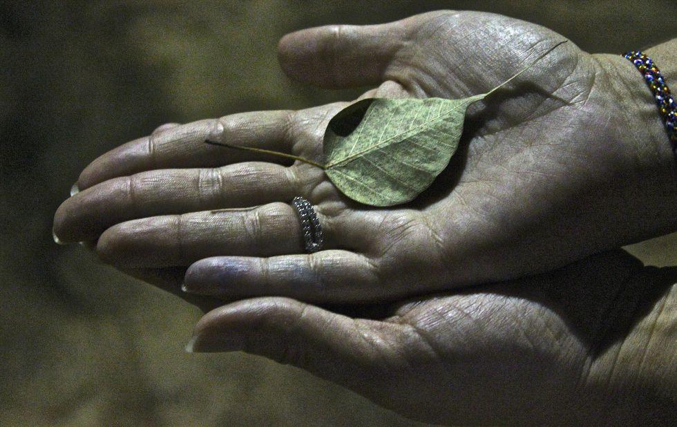 Plantacje herbaty - Wycieczka Sri Lanka