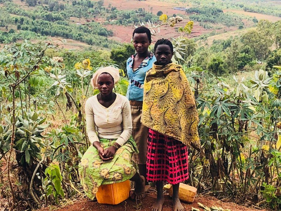 odwiedziny na plantacji herbaty w ugandzie