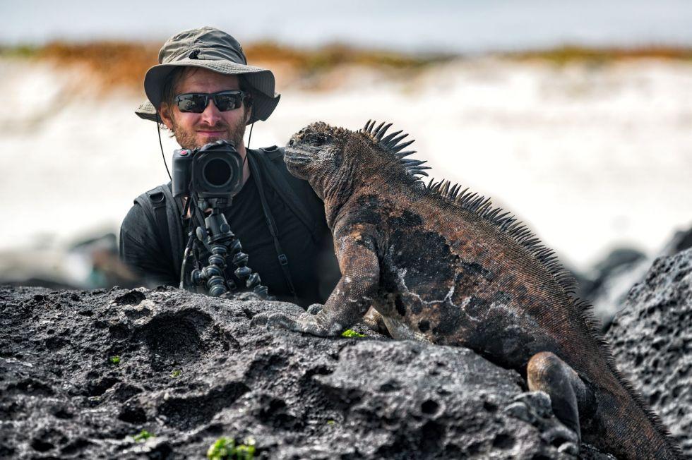 Legwany morskie, które żyją tylko na Galapagos.