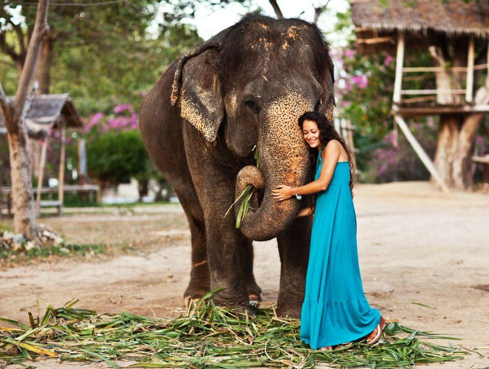 fakultatywna przejażdżka na słoniach