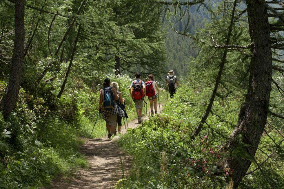 Trekking w Appalachach w USA.