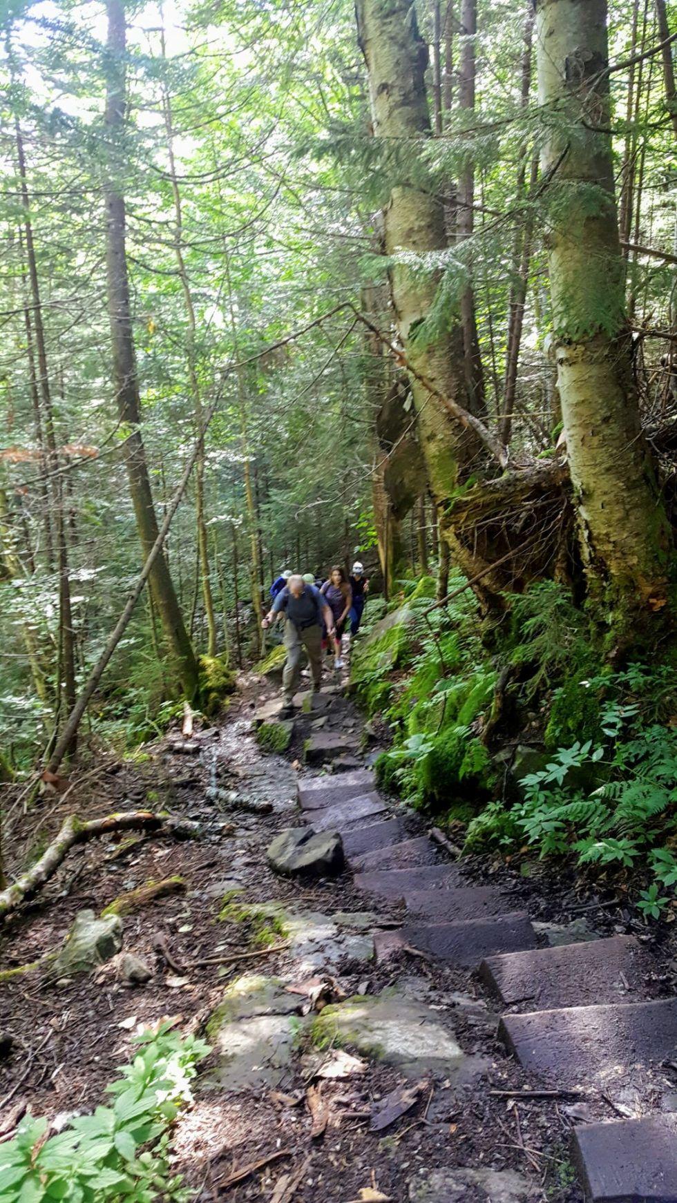 trekking-w-appalachach