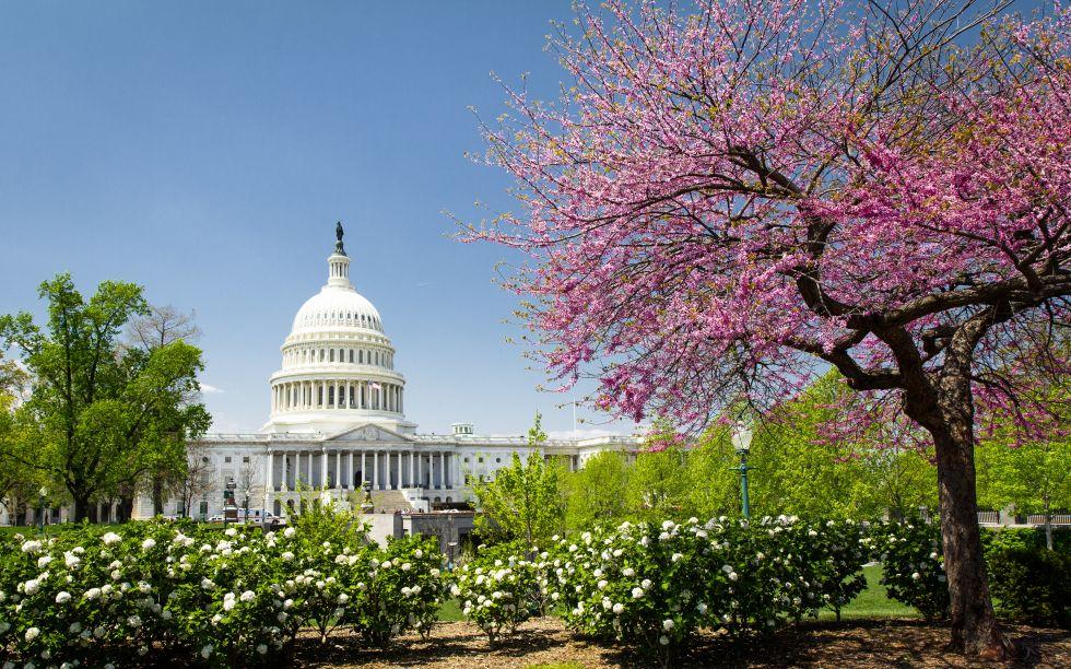 Widok na Kapitol Stanow Zjednoczonych, Waszyngton, Washington