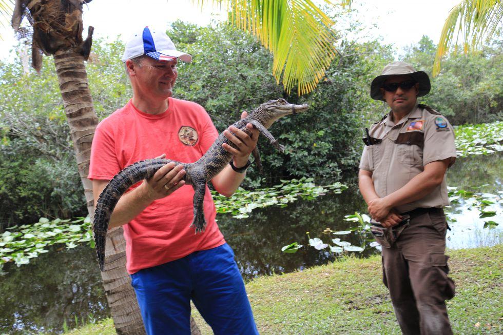Park Narodowy Everglades, Floryda, USA