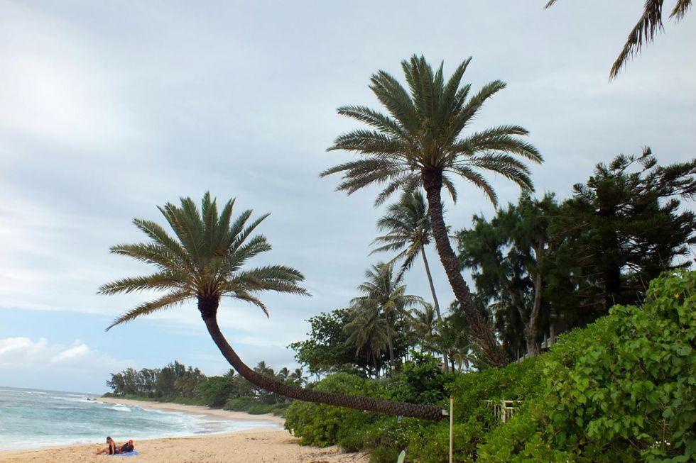 Odpoczynek Hawaje