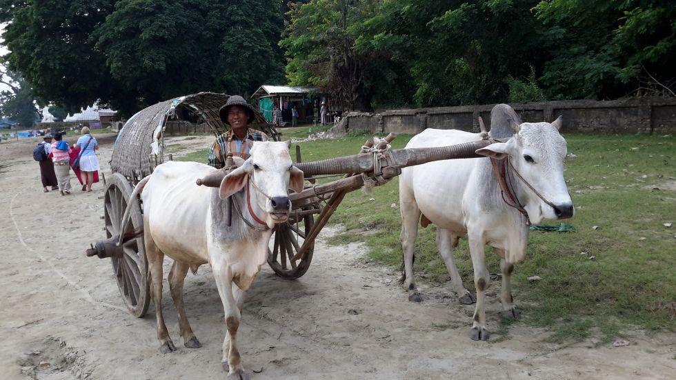 Wycieczka do Birmy.